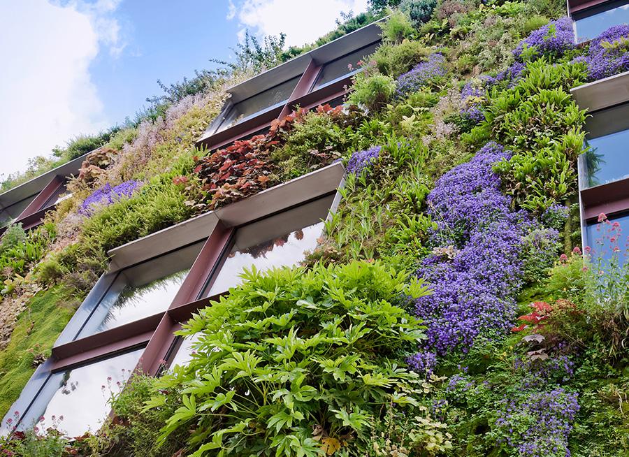 Fassadenbrünung für eine Green-City durch Urbainity